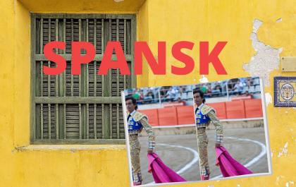 NYHED: Nyt spanskhold